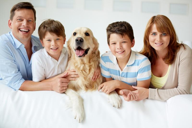 Kinderlieb und brav: der richtige Hund für die Familie