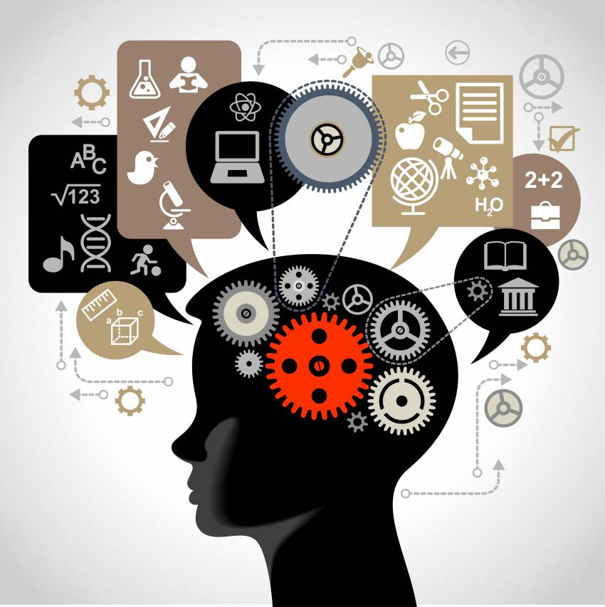 Gehirn Kind Wissenschaft