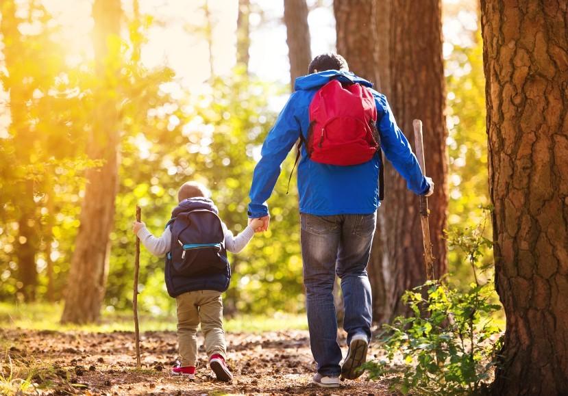 Vater und Sohn gehen im Wald wandern