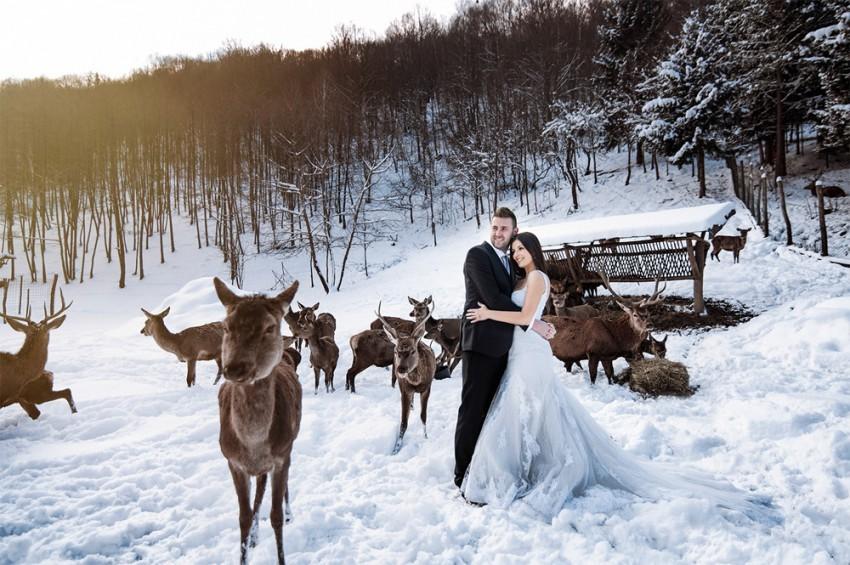 Hochzeitsinspiration-Brautpaarshooting mit Rehen