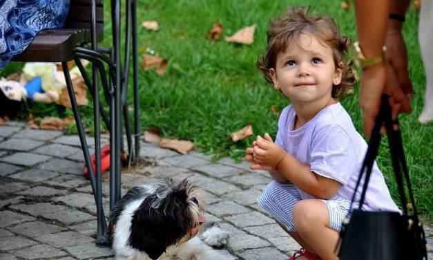 So klappt es mit Kind und Hund in der Familie