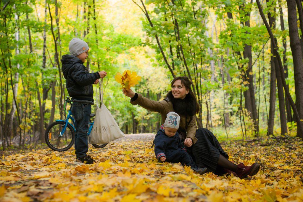Kinder Picknick Wald Herbst