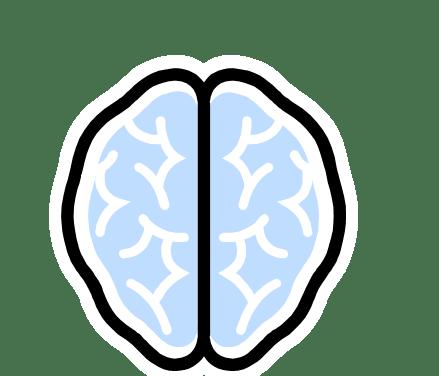 Nahrungsergänzungsmittel, die helfen können, die Hirnleistung zu steigern